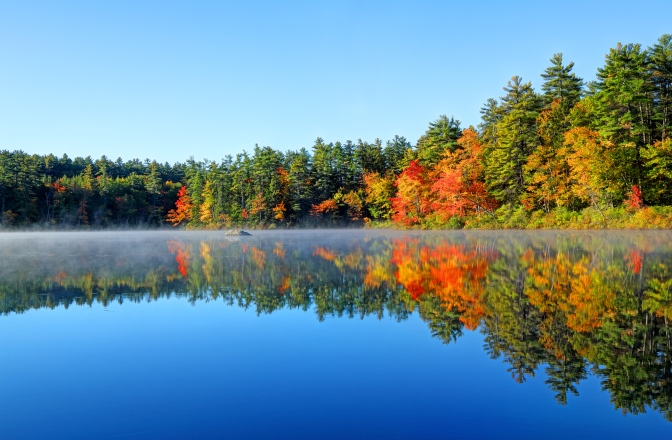 Picture of fall leaves around a lake